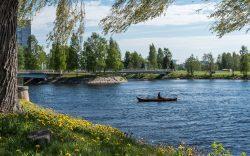 Kalastaja kalastaa Oulujoella